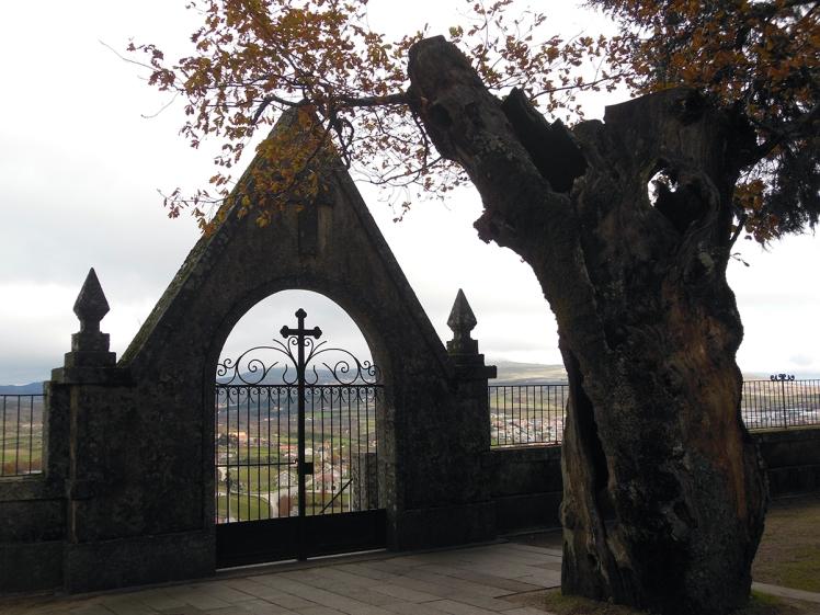 Castelo Montalegre  J