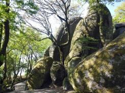 Afloramentos de granito na Montanha da Penha Guimarães # 1